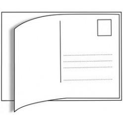 Herma étiquettes de cartes postales, 95 x 145 mm, blanches