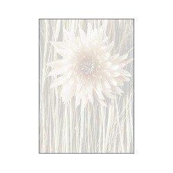"""Sigel papier design, motif """"finesse"""", papier fin, format a4"""