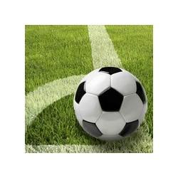 """Papstar motivservietten """"football"""", 330 x 330 mm"""